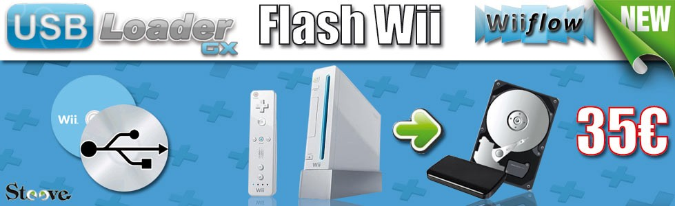 Flash console wii